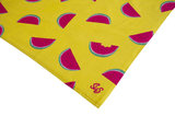 Beach Towel Juicy Melon_